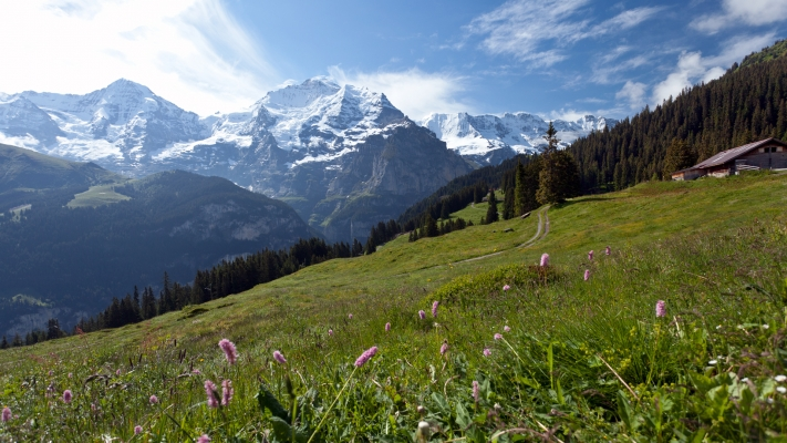 Switzerland's Jungfrau Region: Best of the Alps