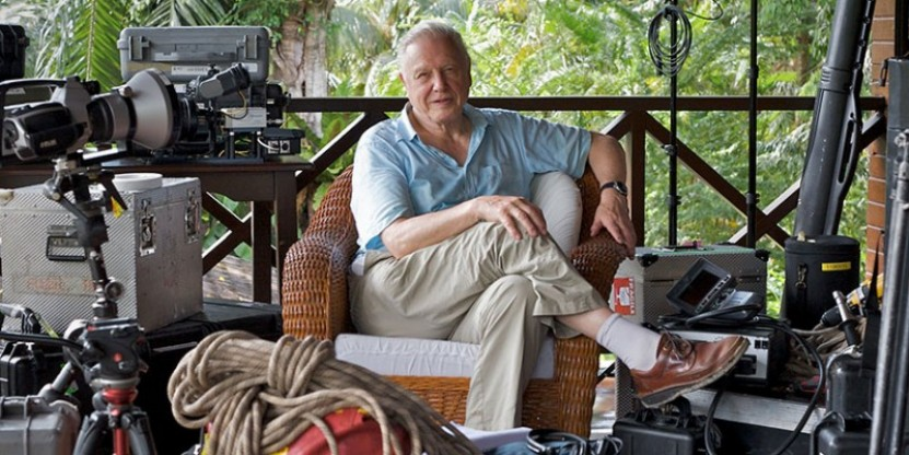 Attenborough's Life Stories: Life on Camera